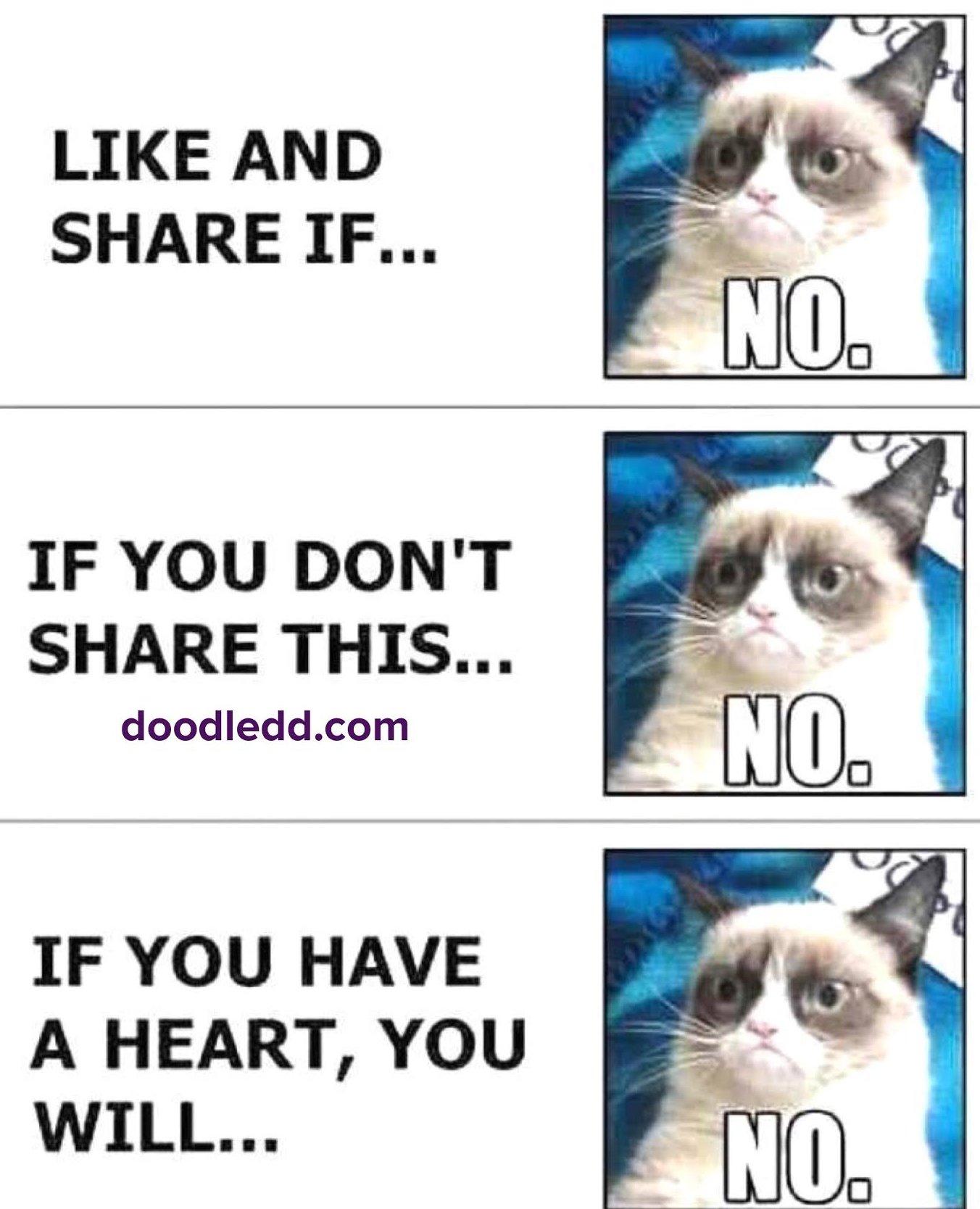 Grumpy Cat LikeAndShare