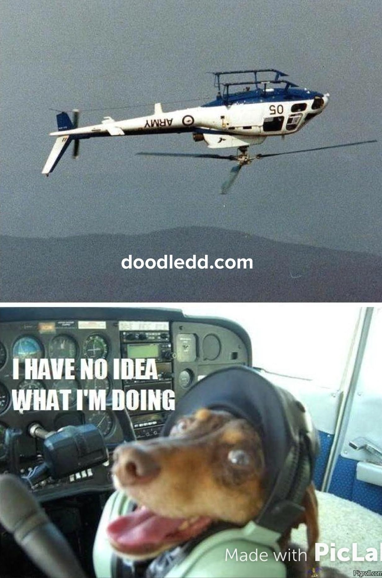 "Dog flying a helicopter upside down ""I have no idea what I'm doing"""