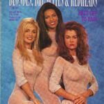 Playboy Blondes Brunettes & Redheads 1993
